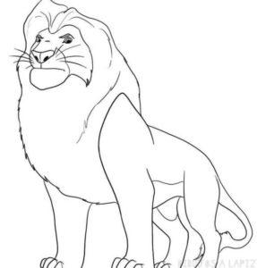 imajenes de leones