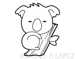 koala para pintar