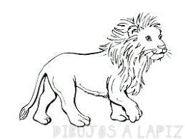 leon para pintar