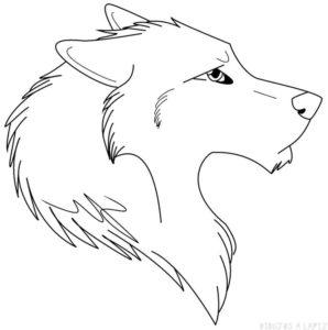 lobo feroz dibujo
