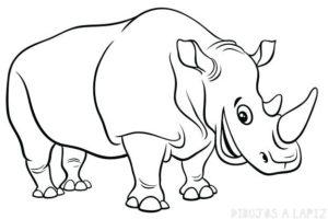 rinoceronte arte