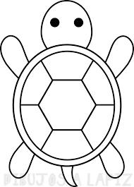 tortuga para pintar