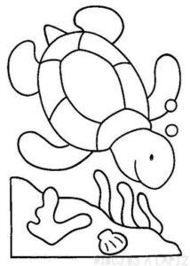 tortugas para dibujar