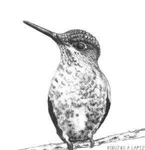 un dibujo de un animal