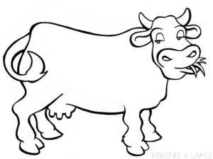 vaca caricatura