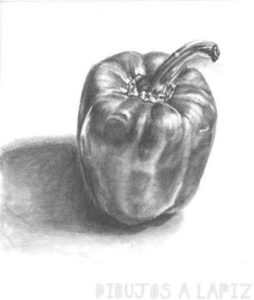 chile mexicano dibujo