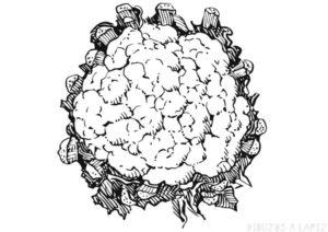 coliflor informacion nutricional