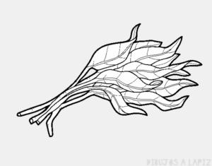 como se planta el apio