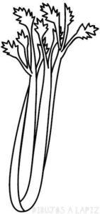 dibujo de apio para colorear