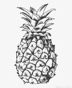 dibujo de frutilla