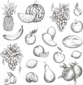 frutas y verduras dibujos
