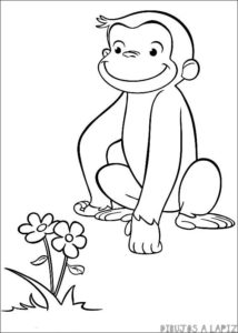 imagenes de monos animados