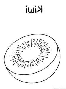 libro kiwi para imprimir scaled