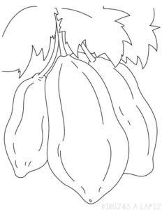 dibujos para colorear papaya