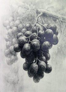 fotos de racimos de uvas scaled