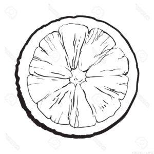 imagenes de naranjas para dibujar scaled