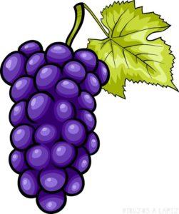 imagenes de uvas animadas