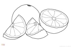 naranja de dibujo scaled