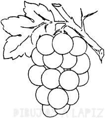 racimos de uvas para pintar