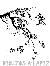 cerezo en flor dibujo