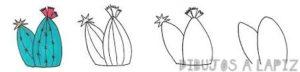 como dibujar cactus