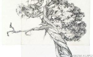 como dibujar un arbol seco
