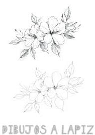 como dibujar una flor paso a paso