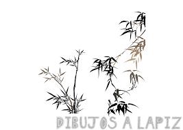dibujo de bambu chino