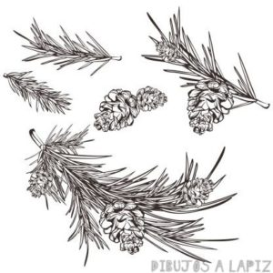 dibujos de arboles para pintar