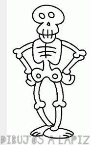 esqueleto dibujo para niños