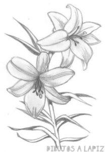 flores para recortar