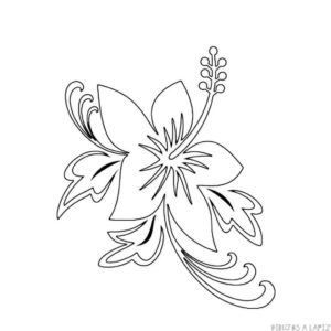 imagenes de flores para pintar