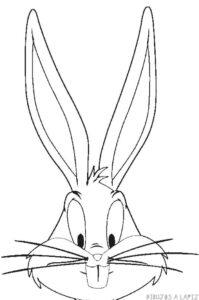 dibujos animados de bos bony