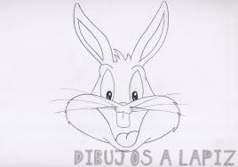 lola bunny dibujo